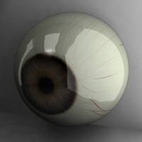 3d brown eye model