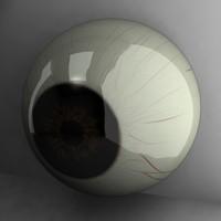 dark human eye 3d model