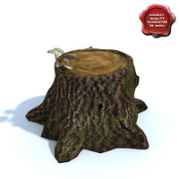 3d old stump model