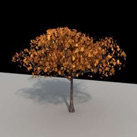 tree architectural 3d model