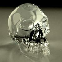 maya crystal skull