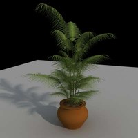 3d model palm interior design