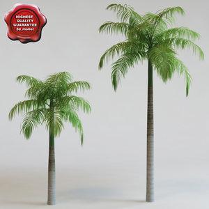 3ds max roystonea elata palm