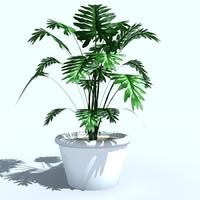 plant_04.zip