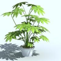 plant_02.zip
