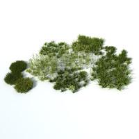 Grass vol2