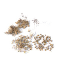 Grass vol3