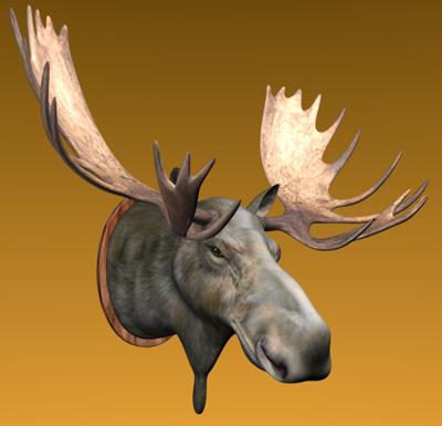 moose head 3dm