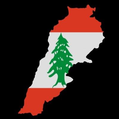 3ds lebanon