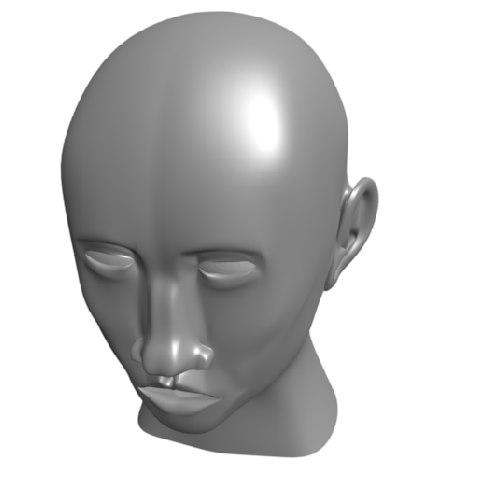 3d cabeza baja calidad