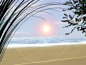 beach sea sand 3d max