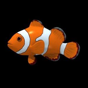3d anemone fish anemonefish