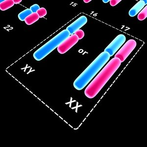 3d model chromosomes stylish
