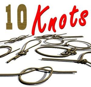 3d 10 knots model