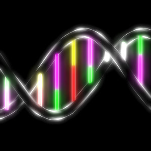 3d dna groove genetic model