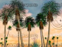 palm trees tropical island 3d model