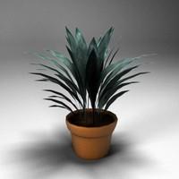 plant.max