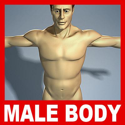 male human body 3d model