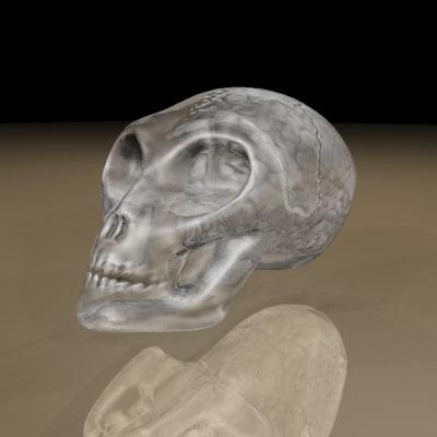 3d glass alien skull brain model