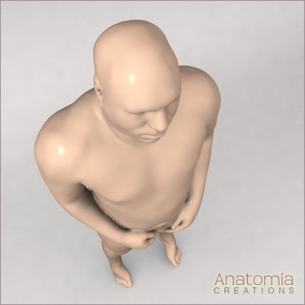 3d model male human skin visible