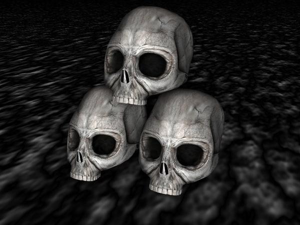 3d skulls model