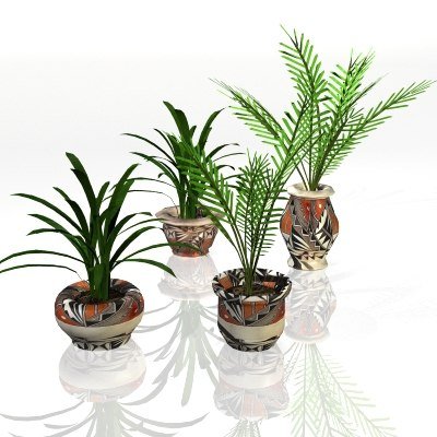 3d plants potted model