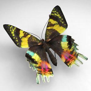 3d model butterfly butt
