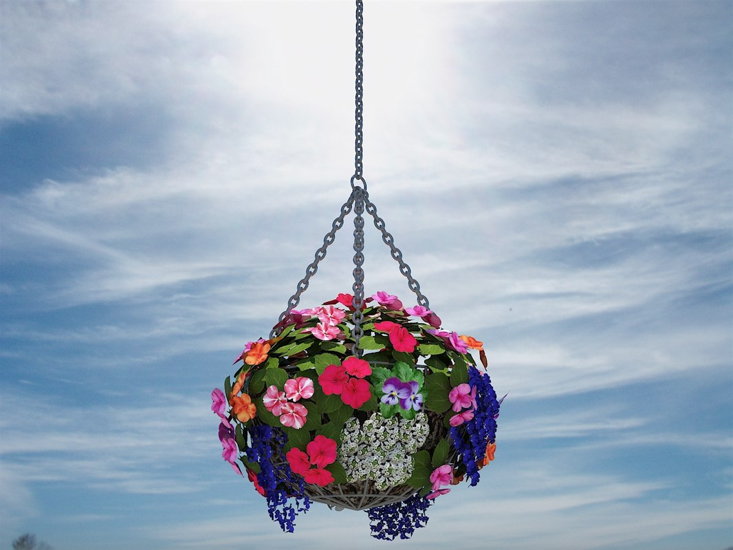 3d hanging flower basket model