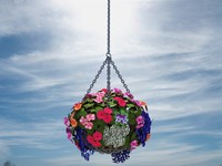 Hanging Flower Basket planter box flower pot