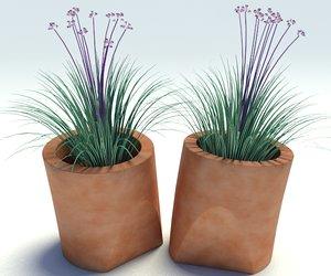 3d vase plants