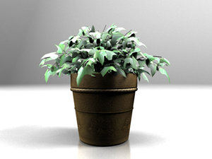 3d max plant potted
