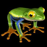 frog_objTS.obj