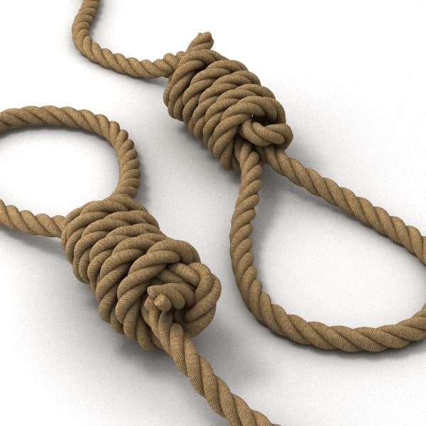 hangman noose max