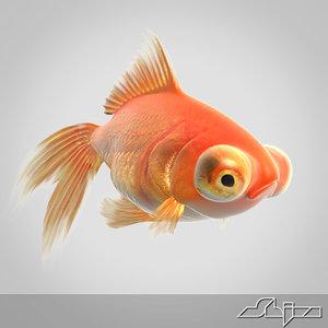 red goldfish 3d model