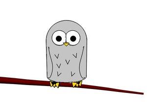 maya cartoon owl