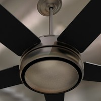 Ceiling Fan-stainless and black