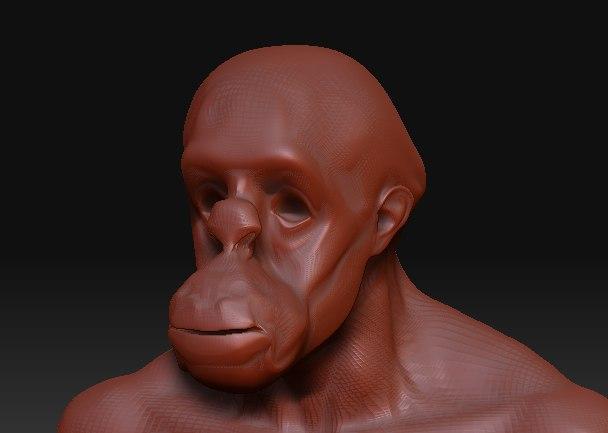 3ds monkey head