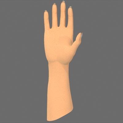 3d women hand