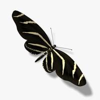 3d model zebra butterfly