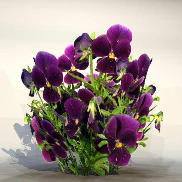 3d model of pc flower
