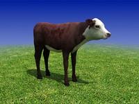 3d cow calf