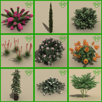 small plant set