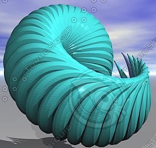 3d seashell groboto model