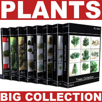 big plants collections 3d max
