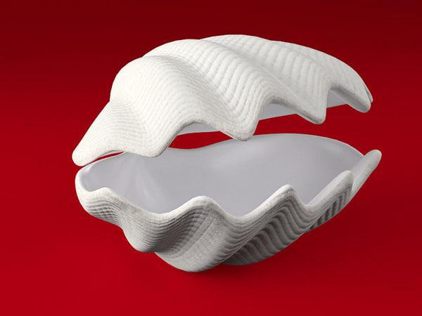 tridacna seashell 3d model