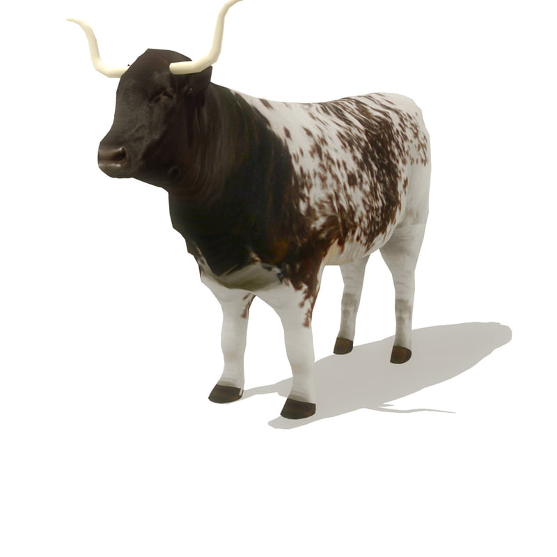 longhorned cow 3d model