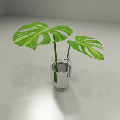 plant monstera leaf 3d 3ds