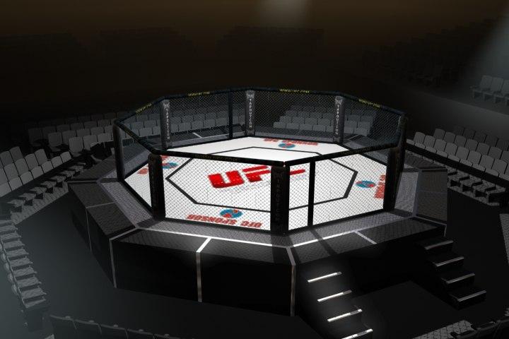 octagon arena ufc fighting 3d model