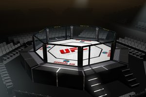 octagon arena ufc fighting 3d model