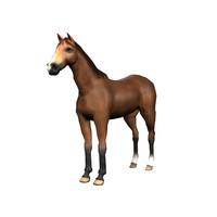 horse modelled 3d obj